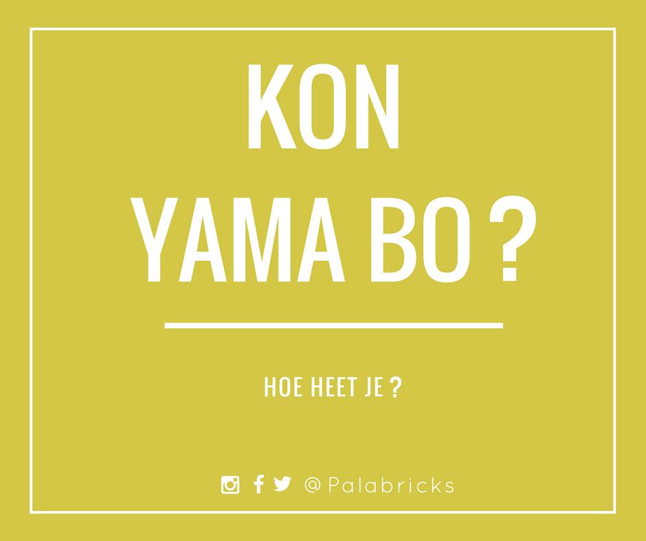 kon yamabo